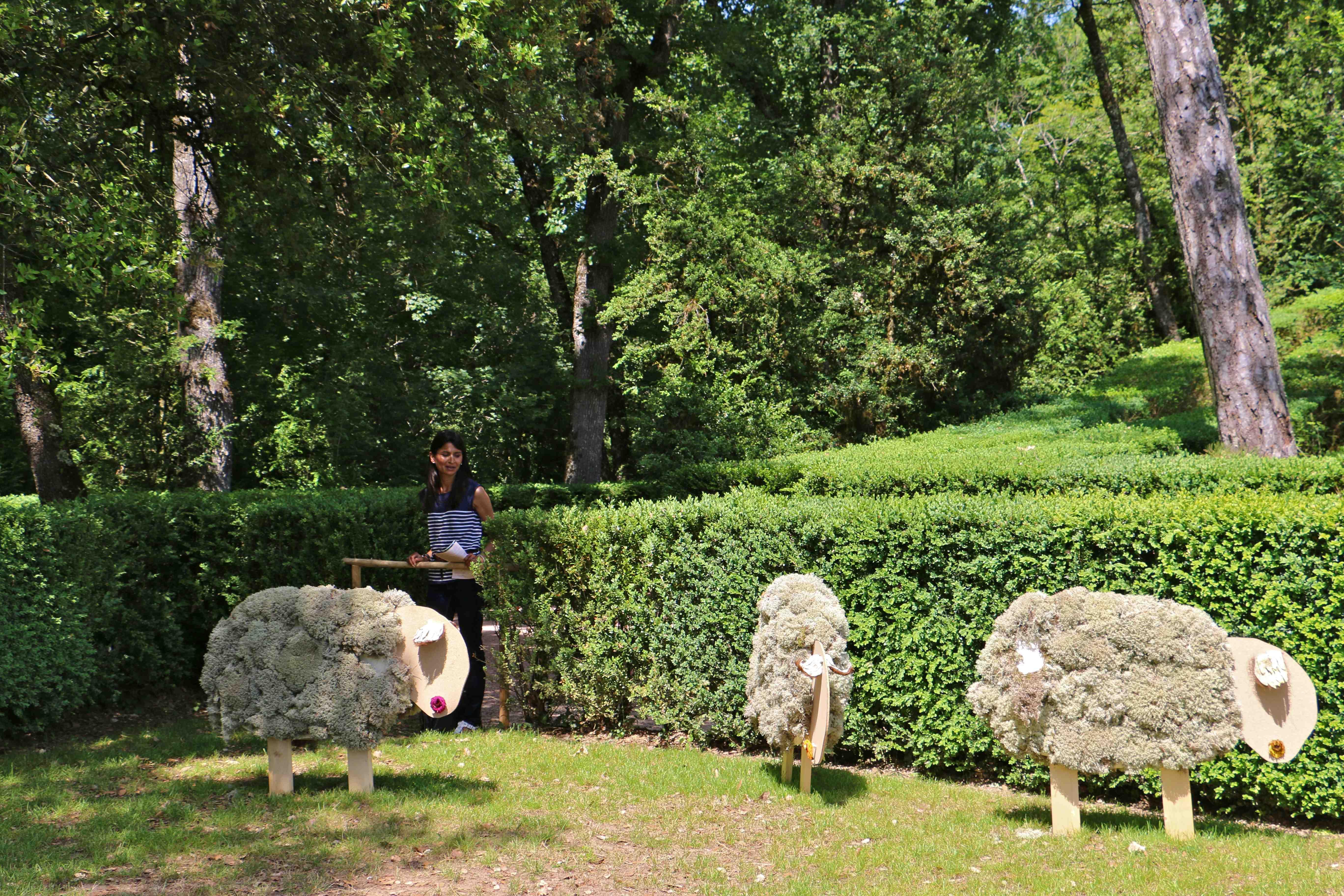 Photo v zac 24220 dans les jardins suspendus de marqueyssac v zac 237393 - Jardins suspendus de marqueyssac ...