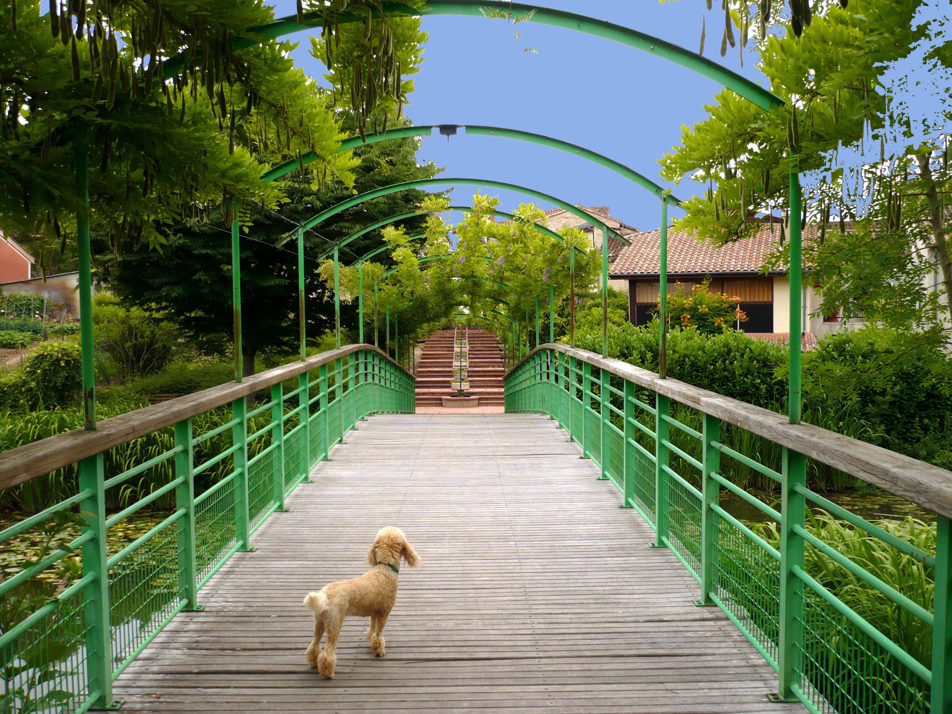 Photo le temple sur lot 47110 pont passant au dessus - Jardin des nenuphars le temple sur lot ...