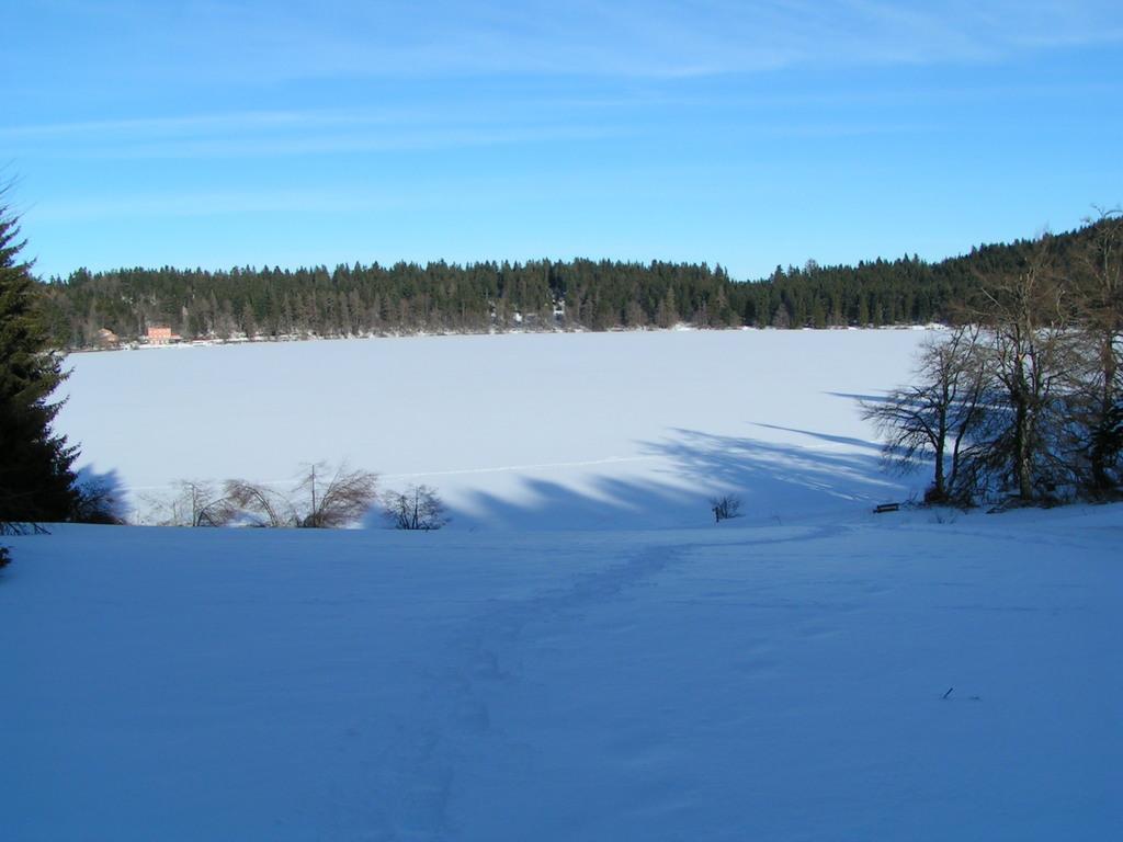 Photo le bouchet saint nicolas 43510 le lac du bouchet pris par la glace le bouchet - Les sainte glace 2017 ...
