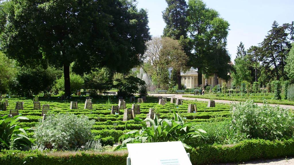 photo dijon 21000 vue sur le jardin botanique dijon 62096. Black Bedroom Furniture Sets. Home Design Ideas