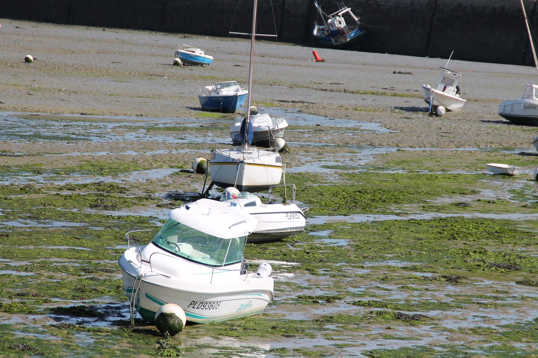 Photo perros guirec 22700 perros guirec 213091 - Office du tourisme perros guirec bretagne ...