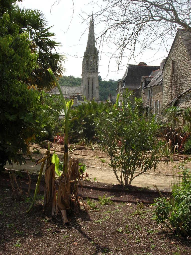 Photo quimper 29000 la cathedrale vue du jardin la for Jardin quimper