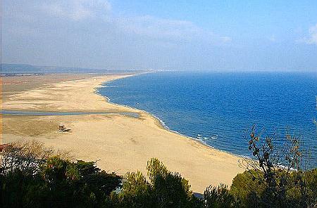 Franqui Plage photo à leucate (11370) : plage de la franqui - leucate, 300943