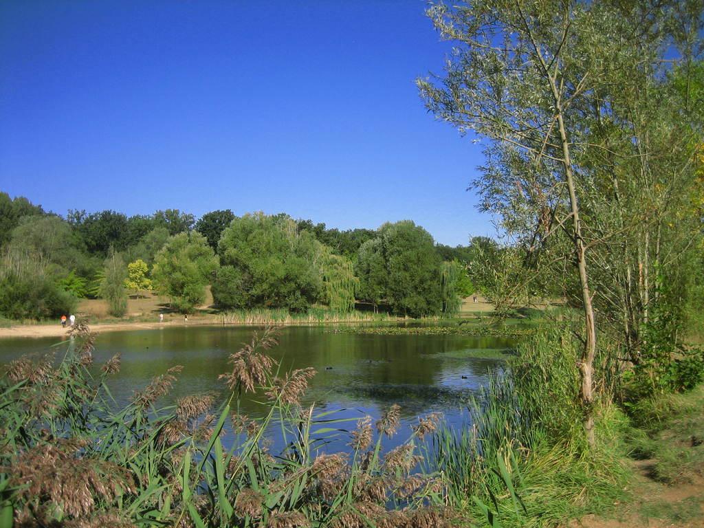 Photo ch tellerault 86100 lac de la for t for Habitat de la vienne chatellerault