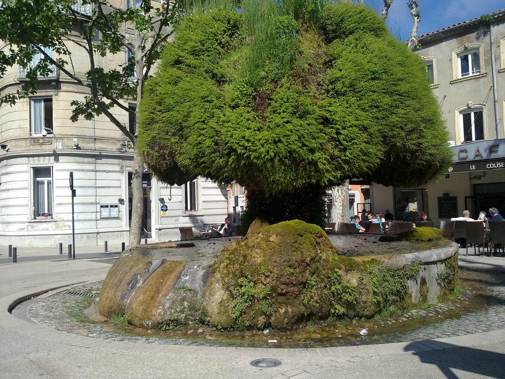 Photo salon de provence 13300 fontaine moussue for Meteo 13300 salon de provence