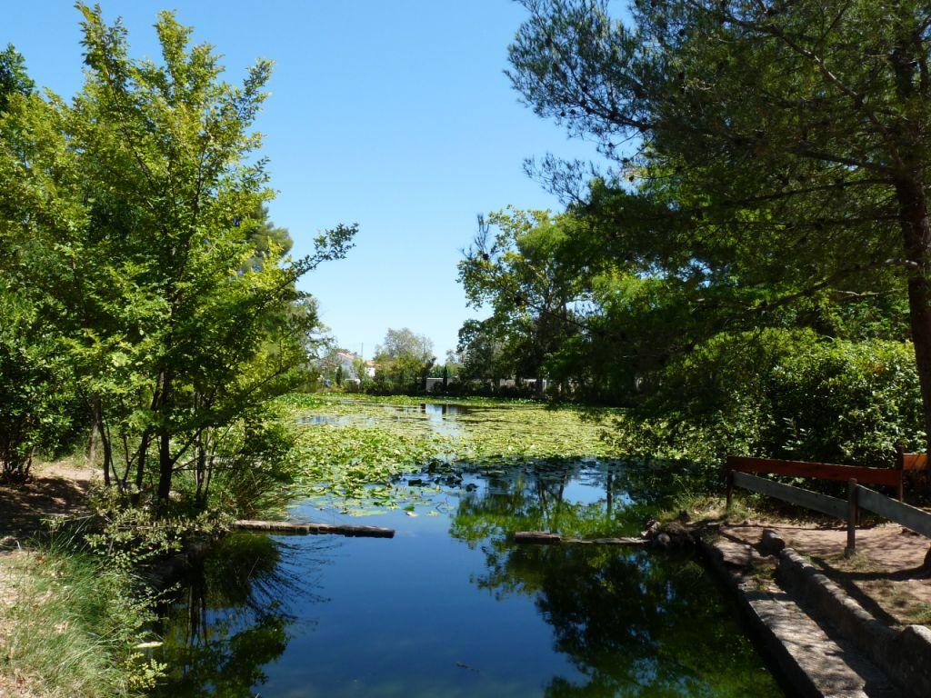 Photo A Sollies Pont 83210 Dans Le Parc Du Chateau