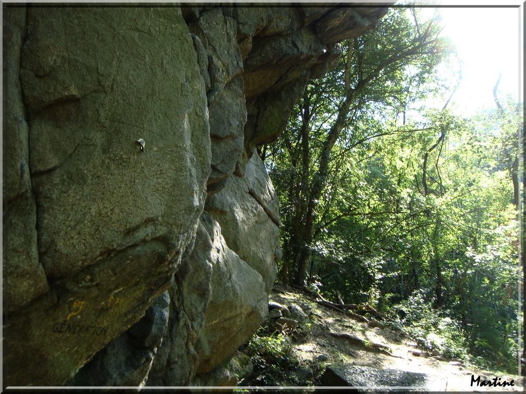 Photo jardin 38200 rocher d 39 escalade dans les sous for Jardin 38200
