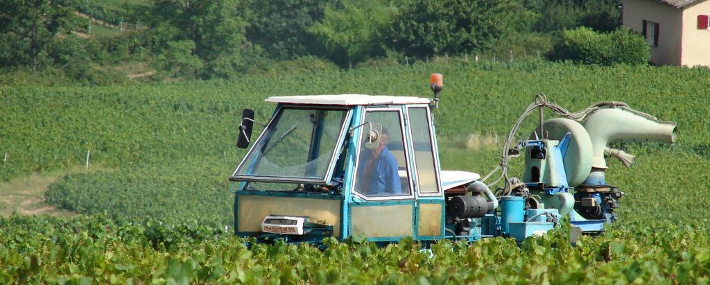 Photo odenas 69460 le traitement de la vigne odenas 34462 - Traitement de la vigne ...