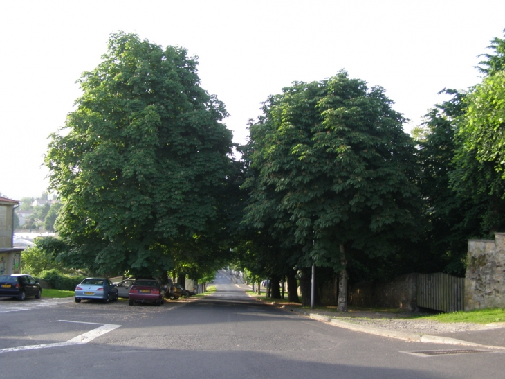 Allee des Marronier - Billom