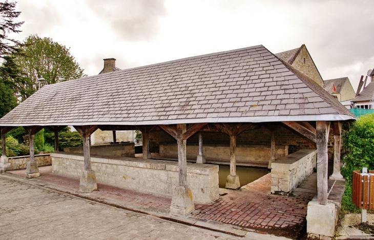 Le Lavoir - Fontenay-le-Pesnel