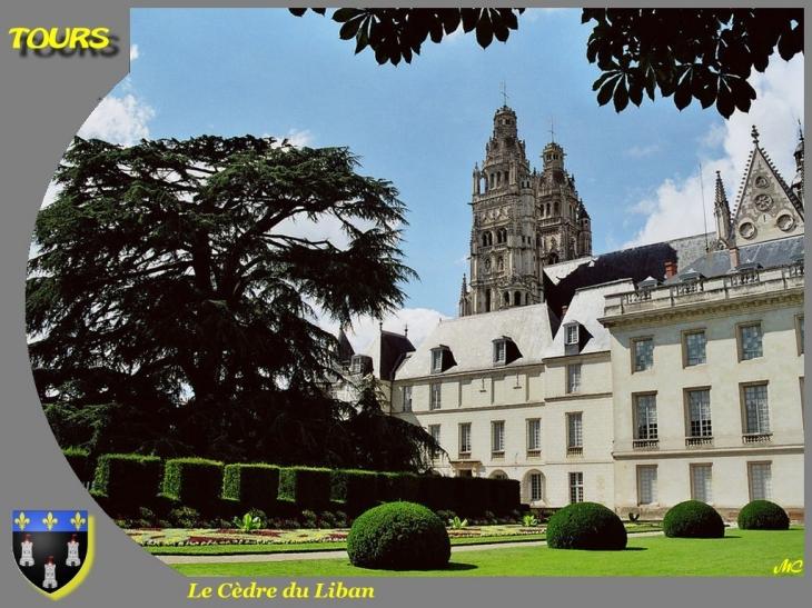 Photo tours 37000 mus e des beaux arts tours 8892 - Office de tourisme de tours indre et loire ...