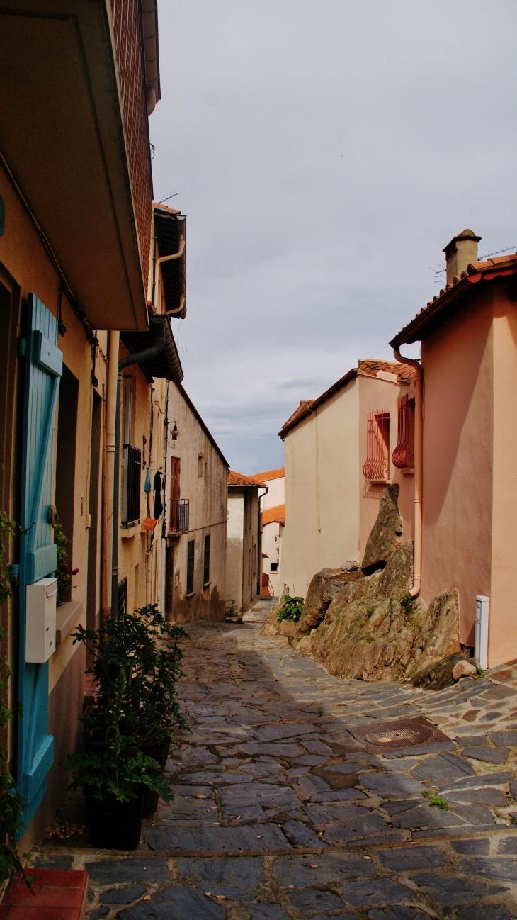 Photo 224 Collioure 66190 Collioure 233876 Communes Com