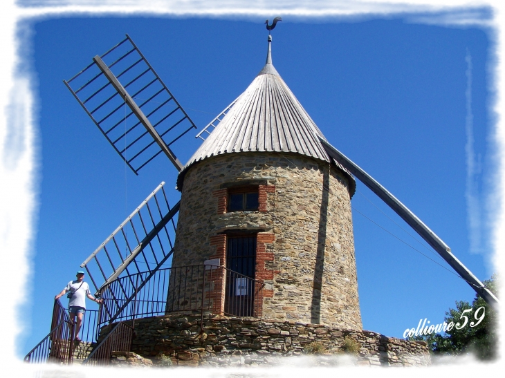 Le  Moulin - Collioure
