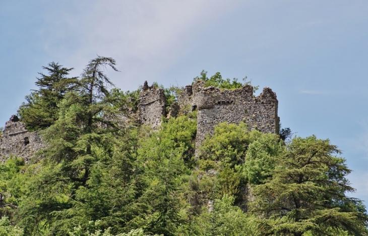 Ruines du Château - Brusque