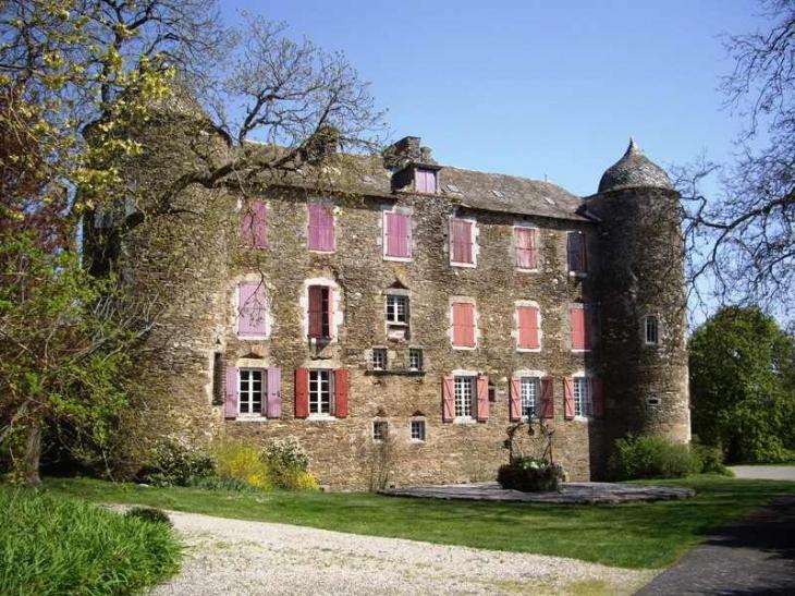 Château du Bosc demeure familiale de Toulouse Lautrec - Camjac
