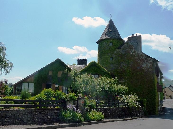 Le château - Saint-Martin-de-Lenne