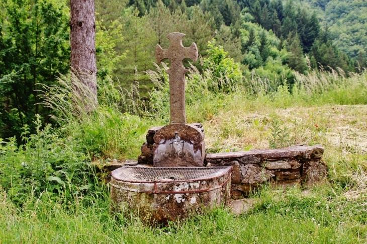 Fontaine et Croix - Sylvanès