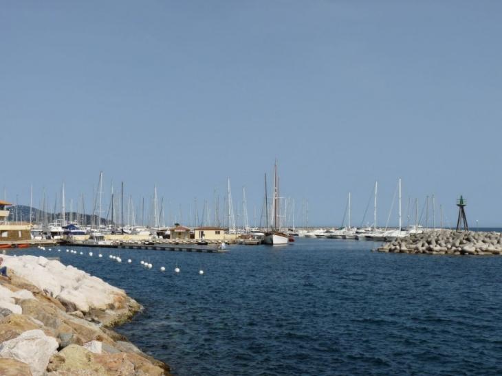 Photo le lavandou 83980 le port le lavandou 62282 - Restaurant le lavandou port ...