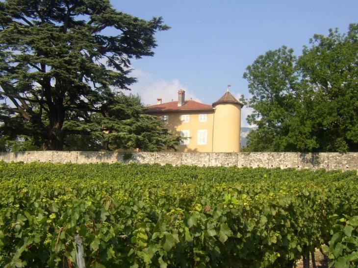 Photo les marches 73800 le chateau de la violette et - Camping les vignes lit et mixe site officiel ...